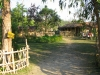 Jungle basecamp