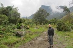 Cocora valley walk