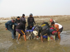Men versus the mighty Ganga