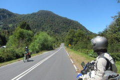 Loads of cyclists
