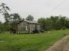 Creole shacks