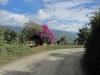 Colombian gravel trail